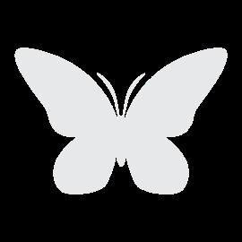 Sommerfugl2