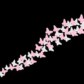 Sommerfugler_final